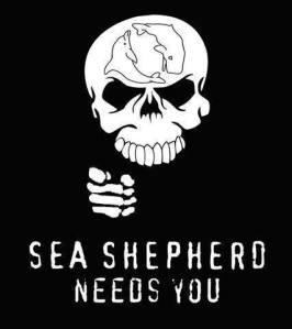Inlegend_SeaShepherd
