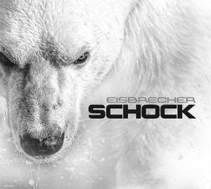 Eisbrecher Schock 2015