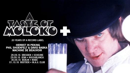 moloko-plus-banner